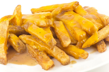 Gravy and Cheese Disco Fries