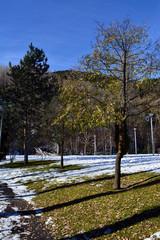 Paisaje de invierno en Andorra
