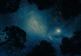 Starry sky through trees poster