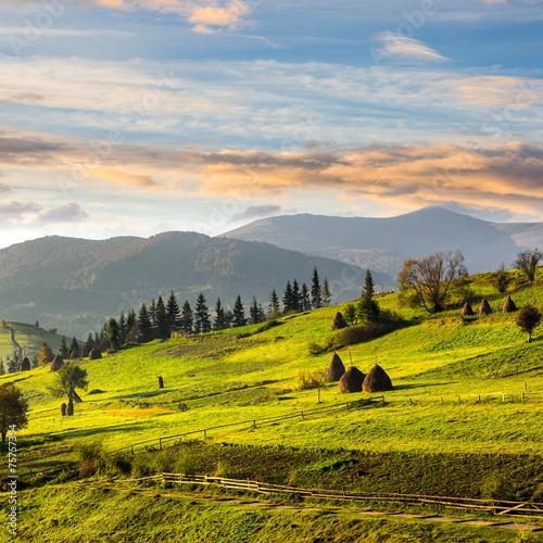 path near field with haystacks at sunrise © Pellinni