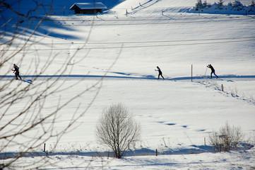 Loipe Skilanglauf