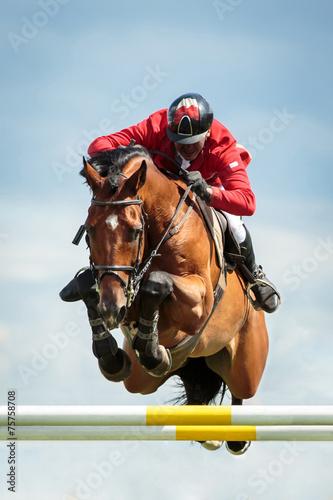 Foto op Aluminium Paardensport Equestrian