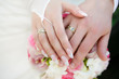 Hands of the groom and the bride with wedding rings - 75762325