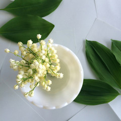 Lily of the valley cuts