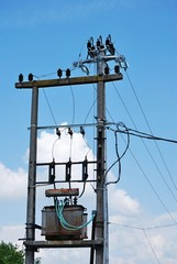 Electric transformer and power wires