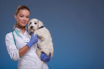Vet holding a cute dog