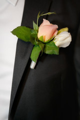 Close up a buttonhole of the groom from beige roses
