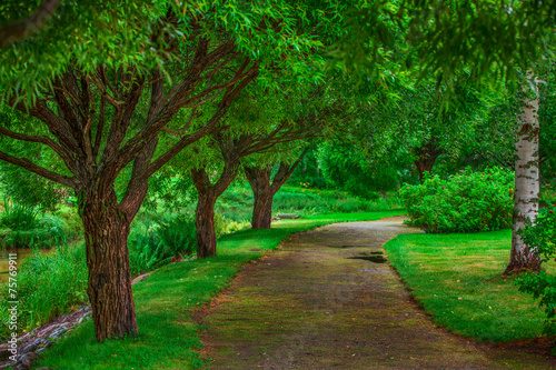 canvas print picture Beautiful walkway