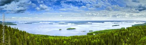 Foto op Plexiglas Water planten Pielinen lake