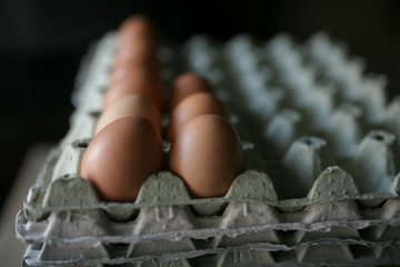 Packed chicken eggs
