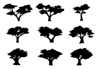 set of silhouettes of southern trees