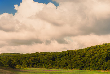 Green forest trees over the large hills