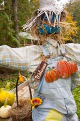 a farm display of a scarecrow, Cowichan Valley, Vancouver Island