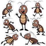 Fototapety Vector illustration of Cartoon Cockroach