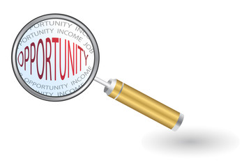 Magnifier - Looking For Opportunity