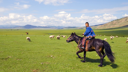 Boy Riding Horse Beautiful Scenic View Concept