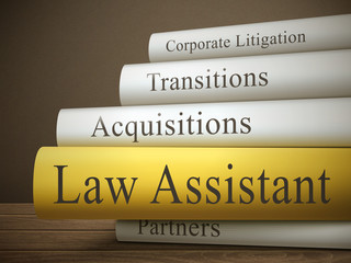 book title of law assistant