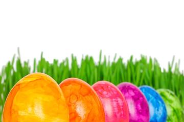 Rainbow coloured Easter Eggs grass