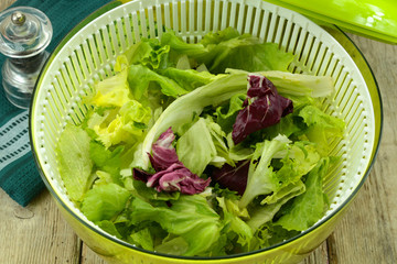salade dans l'essoreuse