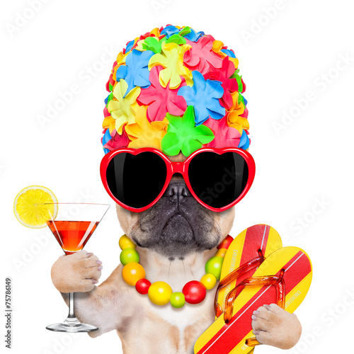 canvas print picture tropical vacation dog