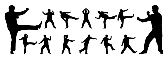 martial arts vector silhouette