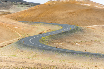 Road in the Iceland