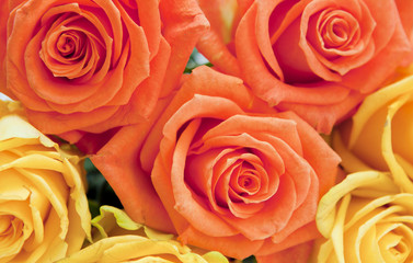 bouquet de roses orange et jaune