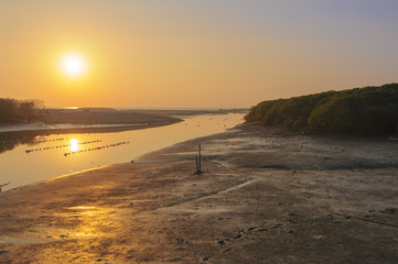 landscape of estuary with sunset in hsinchu