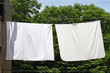canvas print picture - Clothes line