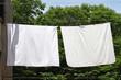 Clothes line - 75802101