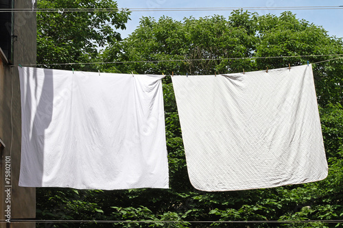 canvas print picture Clothes line