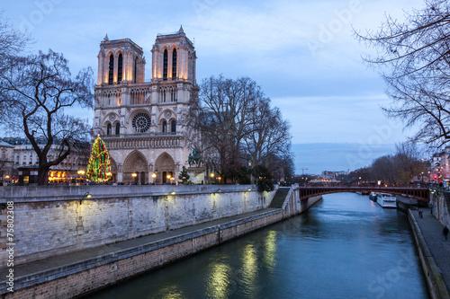 Leinwanddruck Bild Notre Dame de Paris at dusk, France.