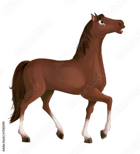Zdjęcia na płótnie, fototapety, obrazy : caballo marrón