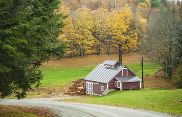 Herbstfärbung in Neu England, Maple sugar house, Readi