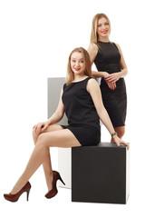 Business ladies posing smiling at camera