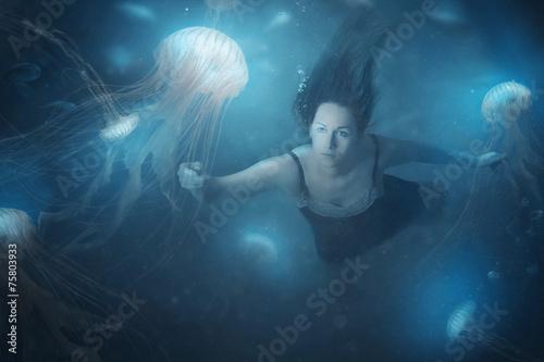 Leinwanddruck Bild Jelly fish