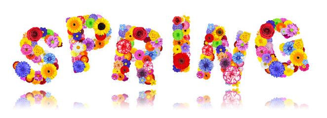Word Spring Made of Colorful Flowers Isolated on White