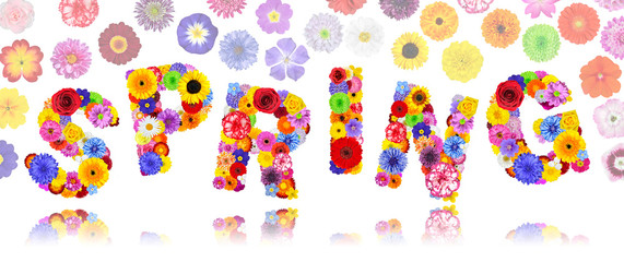Word Spring Made of Colorful Flowers Isolated
