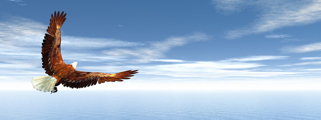Eagle flying - 3D render