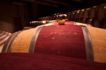 botte di vino carmenere