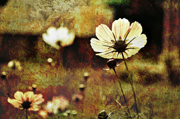 grunge sunny flowers
