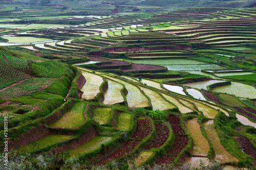 Foto op Canvas Heuvel Madagascar