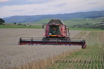 Harvester on field