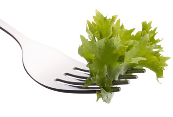 Fresh lettuce salad  on fork isolated on white background cutout