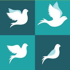 Peace design, vector illustration.