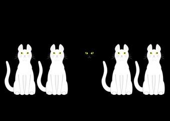 白猫の中の黒猫
