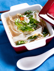 vietnamese pho chicken soup