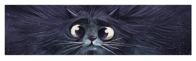 gato en primer plano