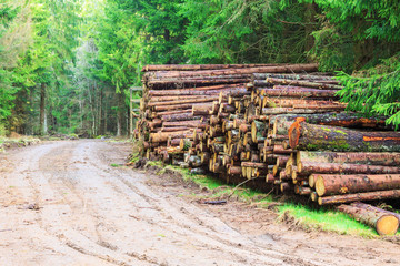 Timber stack by the country road