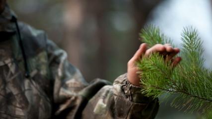Man's hand touch pine brunch
